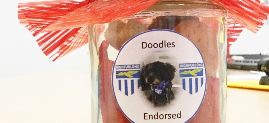 Image courtesy of author // The Doodles-endorsed dog treats.