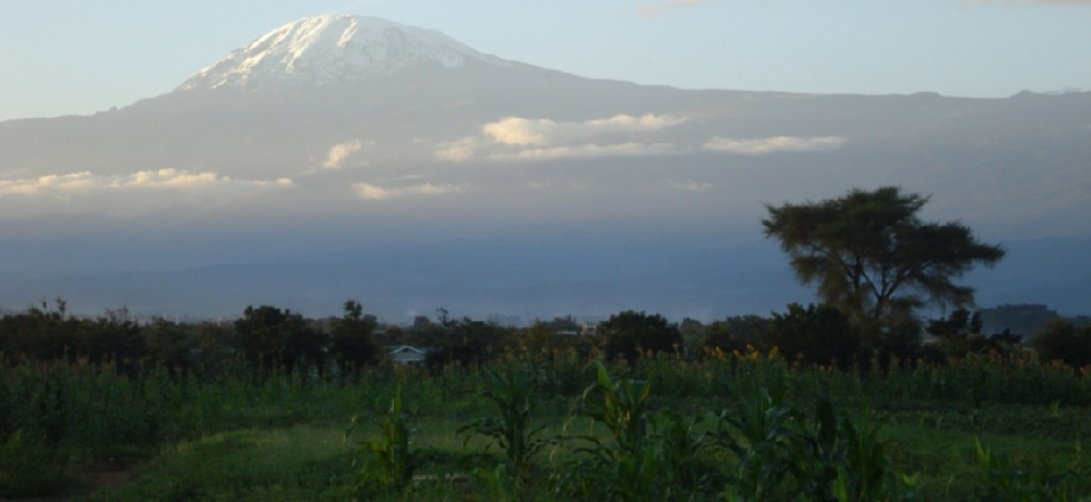 How our students conquered Kilimanjaro