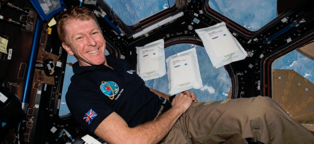 Pupils' Rocket Science seeds return to earth from Tim Peake