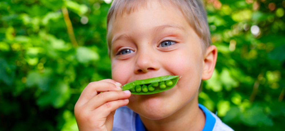 Schools growing their own food with the WWF Easy Peasy Pea Challenge
