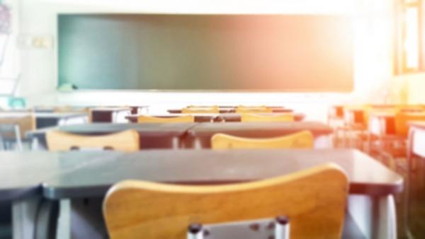 Creating a more diverse curriculum
