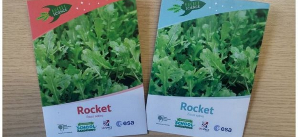 Stafford pupils being wowed by Tim Peake's rocket seeds